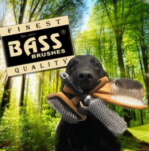 dogs brushed with bass brushes at Pet Styling in Eindhoven Veldhoven